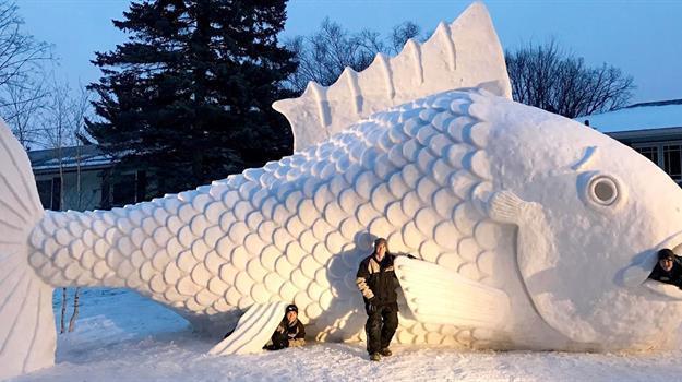 snow-fish